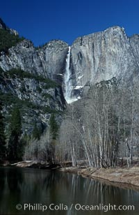 Yosemite Falls viewed from swinging bridge over Merced River, winter, Yosemite Valley. Yosemite Falls, Yosemite National Park, California, USA, natural history stock photograph, photo id 07031
