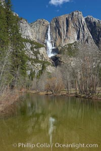 Yosemite Falls reflected in the Merced River, viewed from Swinging Bridge, Yosemite National Park, California