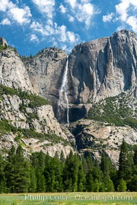 Yosemite Falls over Cook's Meadow, Yosemite National Park