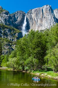 Image 09214, Rafters enjoy a Spring day on the Merced River in Yosemite Valley, with Yosemite Falls in the background. Yosemite Falls, Yosemite National Park, California, USA, Phillip Colla, all rights reserved worldwide. Keywords: california, cascade, environment, flow, landscape, national parks, nature, outdoors, outside, river, scene, scenery, scenic, sierra, sierra nevada, usa, water, waterfall, world heritage sites, yosemite, yosemite falls, yosemite national park, yosemite park, yosemite valley.