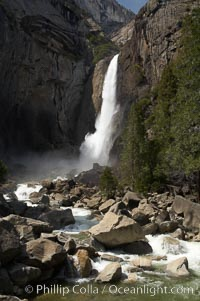 Lower Yosemite Falls near peak flow in spring. Yosemite Valley, Yosemite National Park, California