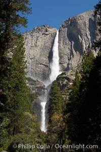 Yosemite Falls (upper, middle and lower sections) at peak flow, spring, Yosemite Valley, Yosemite National Park, California