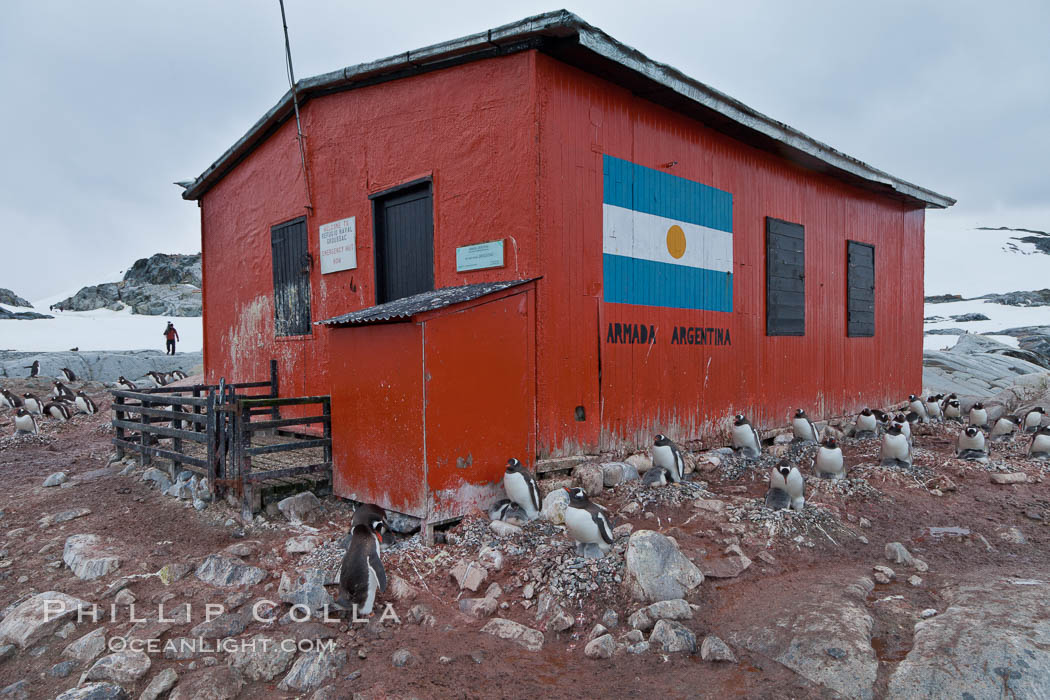 Argentine research hut on Petermann Island, Antarctica. Peterman Island, Antarctic Peninsula, Antarctica, Pygoscelis papua, natural history stock photograph, photo id 25605