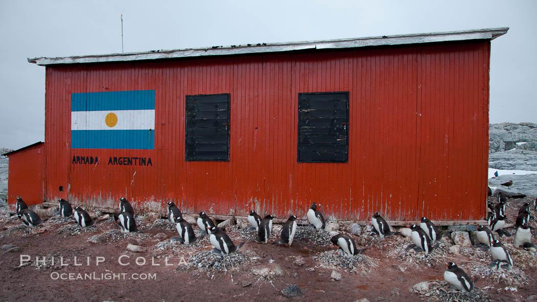 Argentine research hut on Petermann Island, Antarctica. Peterman Island, Antarctic Peninsula, Antarctica, Pygoscelis papua, natural history stock photograph, photo id 25633