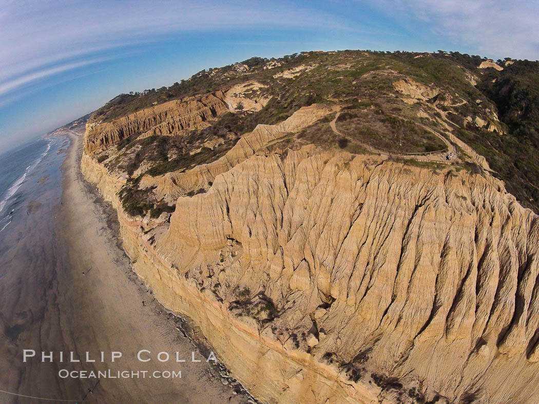 Torrey Pines balloon aerial survey photo.  Torrey Pines seacliffs, rising up to 300 feet above the ocean, stretch from Del Mar to La Jolla. On the mesa atop the bluffs are found Torrey pine trees, one of the rare species of pines in the world. Peregine falcons nest at the edge of the cliffs. This photo was made as part of an experimental balloon aerial photographic survey flight over Torrey Pines State Reserve, by permission of Torrey Pines State Reserve. Torrey Pines State Reserve, San Diego, California, USA, natural history stock photograph, photo id 27291