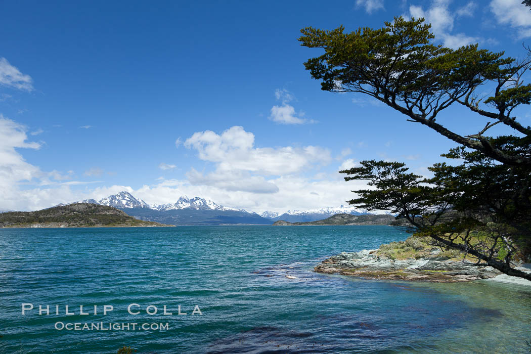Beagle Channel from Tierra del Fuego National Park, Argentina. Ushuaia, natural history stock photograph, photo id 23608