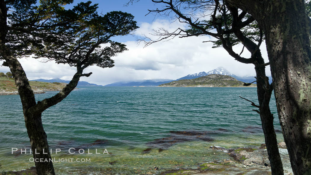 Beagle Channel from Tierra del Fuego National Park, Argentina. Ushuaia, natural history stock photograph, photo id 23616