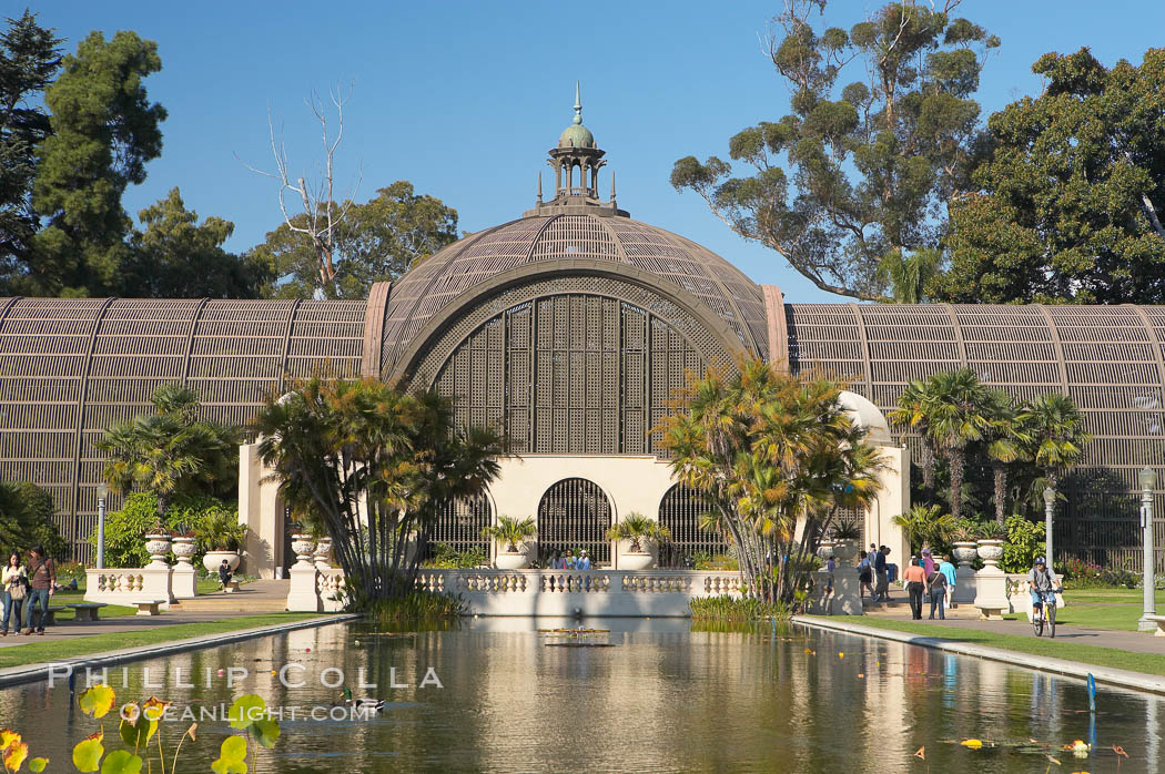 The Botanical Building in Balboa Park, San Diego.  The Botanical Building, at 250 feet long by 75 feet wide and 60 feet tall, was the largest wood lath structure in the world when it was built in 1915 for the Panama-California Exposition. The Botanical Building, located on the Prado, west of the Museum of Art, contains about 2,100 permanent tropical plants along with changing seasonal flowers. The Lily Pond, just south of the Botanical Building, is an eloquent example of the use of reflecting pools to enhance architecture. The 193 by 43 foot pond and smaller companion pool were originally referred to as Las Lagunas de las Flores (The Lakes of the Flowers) and were designed as aquatic gardens. The pools contain exotic water lilies and lotus which bloom spring through fall.  Balboa Park, San Diego. Balboa Park, San Diego, California, USA, natural history stock photograph, photo id 14584