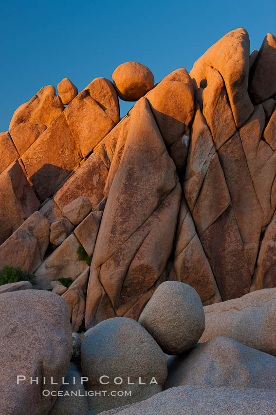 Boulders and sunset in Joshua Tree National Park.  The warm sunlight gently lights unusual boulder formations at Jumbo Rocks in Joshua Tree National Park, California. Joshua Tree National Park, California, USA, natural history stock photograph, photo id 26770