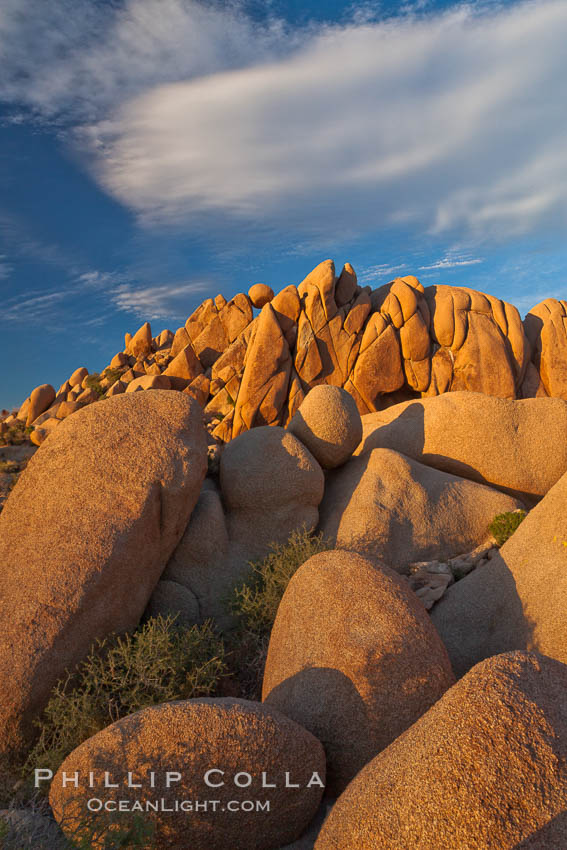 Boulders and sunset in Joshua Tree National Park.  The warm sunlight gently lights unusual boulder formations at Jumbo Rocks in Joshua Tree National Park, California. Joshua Tree National Park, California, USA, natural history stock photograph, photo id 26737