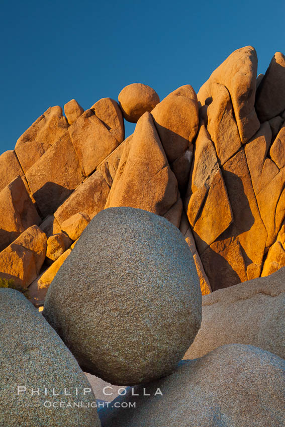 Boulders and sunset in Joshua Tree National Park.  The warm sunlight gently lights unusual boulder formations at Jumbo Rocks in Joshua Tree National Park, California. Joshua Tree National Park, California, USA, natural history stock photograph, photo id 26757