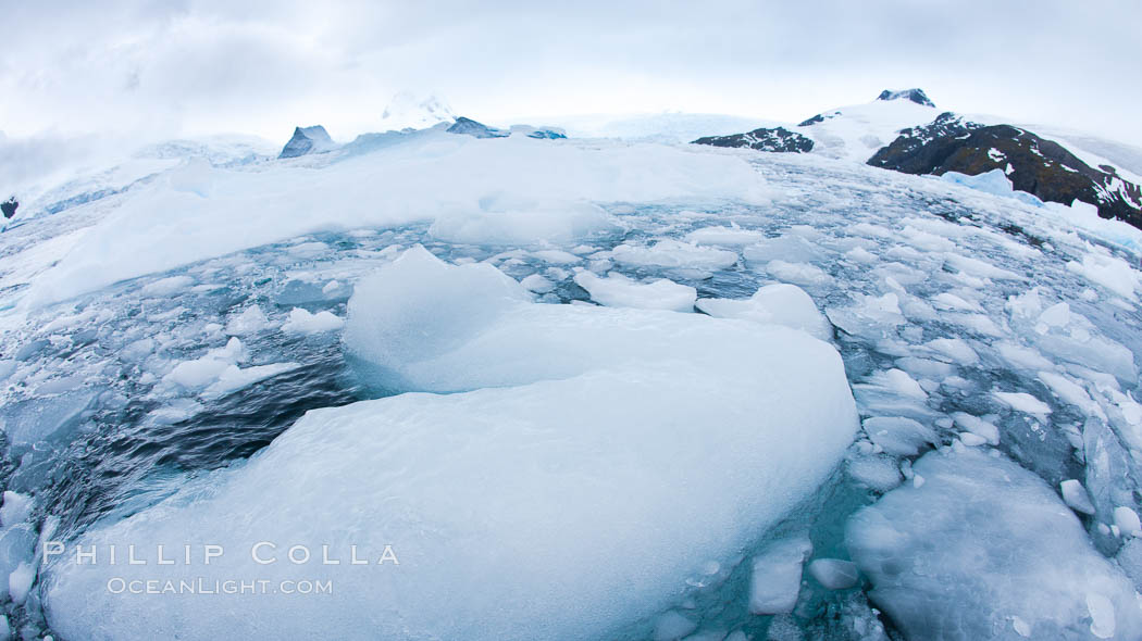 Brash ice and pack ice in Antarctica.  Brash ices fills the ocean waters of Cierva Cove on the Antarctic Peninsula.  The ice is a mix of sea ice that has floated near shore on the tide and chunks of ice that have fallen into the water from nearby land-bound glaciers., natural history stock photograph, photo id 25595