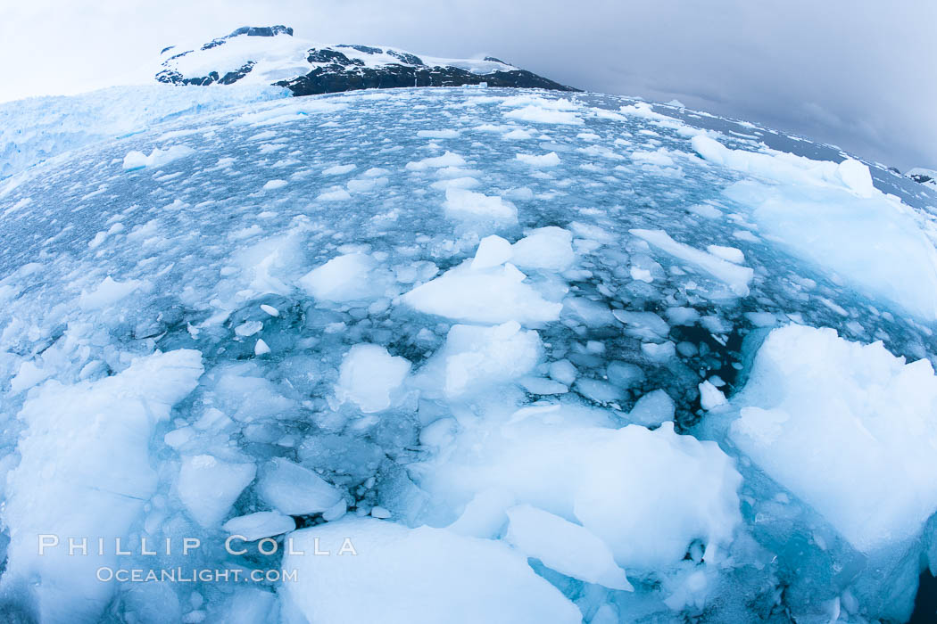 Brash ice and pack ice in Antarctica.  Brash ices fills the ocean waters of Cierva Cove on the Antarctic Peninsula.  The ice is a mix of sea ice that has floated near shore on the tide and chunks of ice that have fallen into the water from nearby land-bound glaciers., natural history stock photograph, photo id 25589
