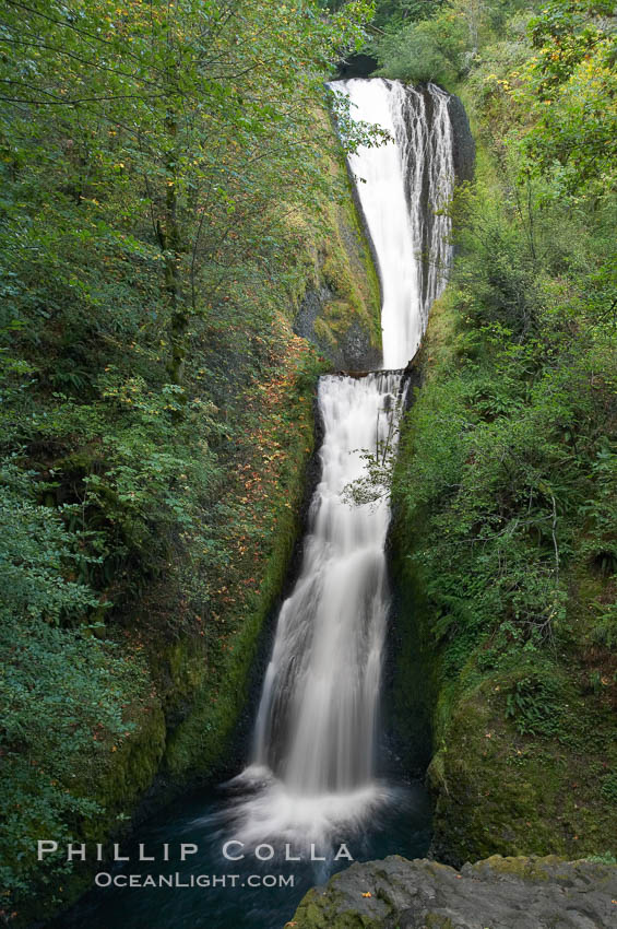 Bridal Veil Falls, a 140 foot fall in the Columbia River Gorge, is not to be confused with the more famous Bridalveil Falls in Yosemite National Park. Columbia River Gorge National Scenic Area, Oregon, USA, natural history stock photograph, photo id 19331