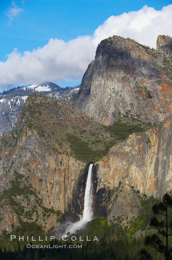 Bridalveil Falls. Yosemite National Park, California, USA, natural history stock photograph, photo id 12659