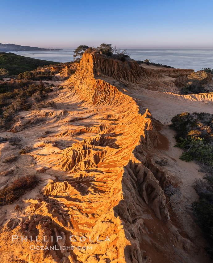 Sunrise over Broken Hill, overlooking La Jolla and the Pacific Ocean, Torrey Pines State Reserve. Torrey Pines State Reserve, San Diego, California, USA, natural history stock photograph, photo id 35844