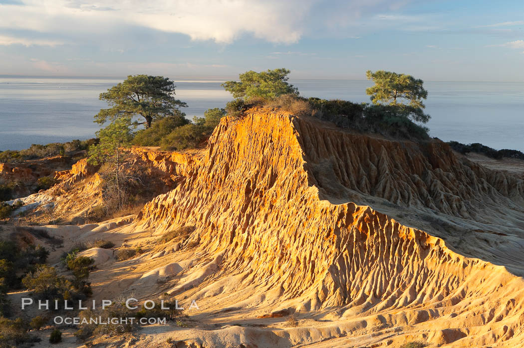 Broken Hill with the Pacific Ocean in the distance.  Broken Hill is an ancient, compacted sand dune that was uplifted to its present location and is now eroding. Torrey Pines State Reserve, San Diego, California, USA, natural history stock photograph, photo id 14758