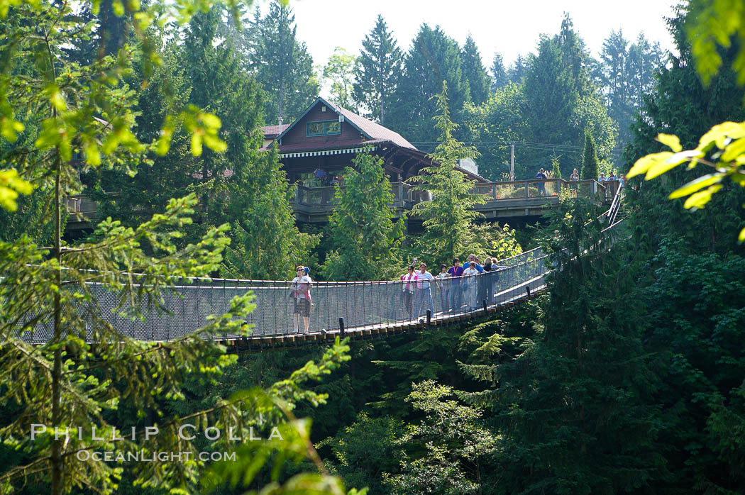 Image 21150, Capilano Suspension Bridge, 140 m (450 ft) long and hanging 70 m (230 ft) above the Capilano River.  The two pre-stressed steel cables supporting the bridge are each capable of supporting 45,000 kgs and together can hold about 1300 people. Vancouver, British Columbia, Canada, Phillip Colla, all rights reserved worldwide. Keywords: british columbia, canada, capilano suspension bridge, douglas fir, vancouver, western hemlock.