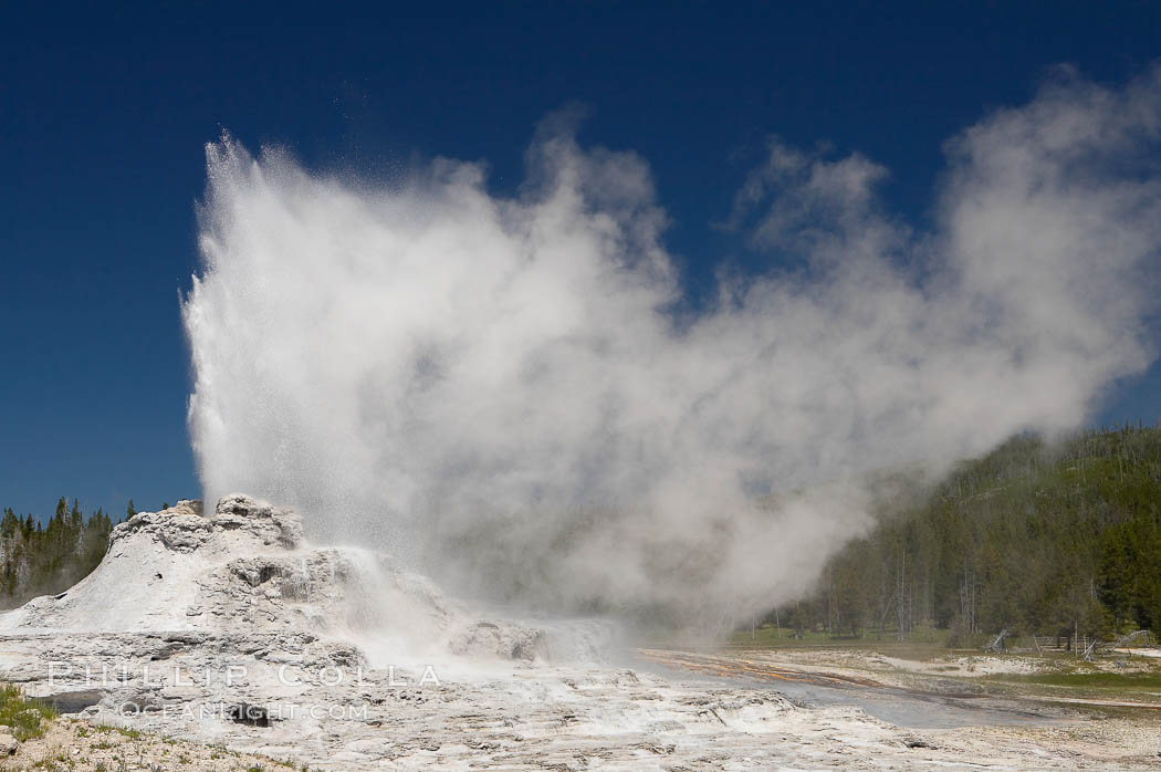 Castle Geyser erupts, reaching 60 to 90 feet in height and lasting 20 minutes.  While Castle Geyser has a 12 foot sinter cone that took 5,000 to 15,000 years to form, it is in fact situated atop geyserite terraces that themselves may have taken 200,000 years to form, making it likely the oldest active geyser in the park. Upper Geyser Basin. Yellowstone National Park, Wyoming, USA, natural history stock photograph, photo id 13424