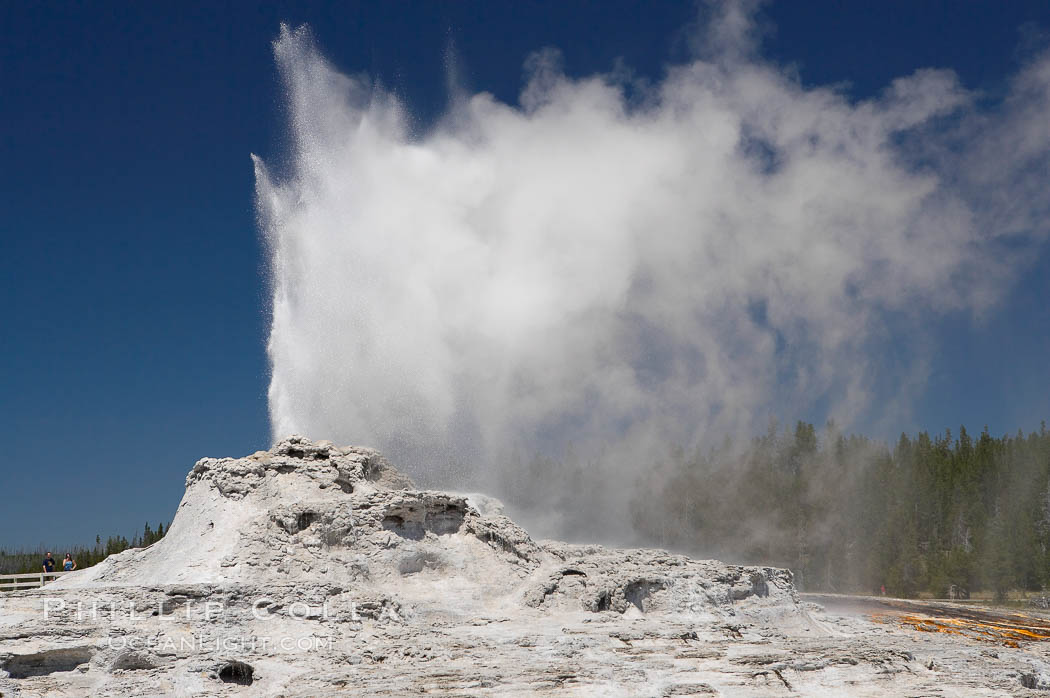 Castle Geyser erupts, reaching 60 to 90 feet in height and lasting 20 minutes.  While Castle Geyser has a 12 foot sinter cone that took 5,000 to 15,000 years to form, it is in fact situated atop geyserite terraces that themselves may have taken 200,000 years to form, making it likely the oldest active geyser in the park. Upper Geyser Basin. Upper Geyser Basin, Yellowstone National Park, Wyoming, USA, natural history stock photograph, photo id 13431