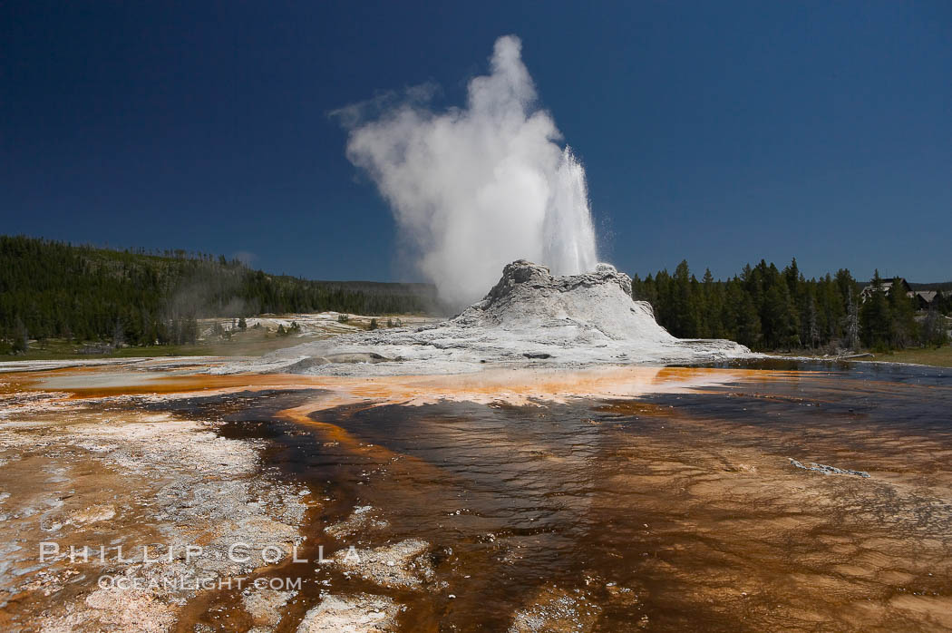 Image 13443, Castle Geyser erupts with the colorful bacteria mats of Tortoise Shell Spring in the foreground.  Castle Geyser reaches 60 to 90 feet in height and lasts 20 minutes.  While Castle Geyser has a 12 foot sinter cone that took 5,000 to 15,000 years to form, it is in fact situated atop geyserite terraces that themselves may have taken 200,000 years to form, making it likely the oldest active geyser in the park. Upper Geyser Basin. Upper Geyser Basin, Yellowstone National Park, Wyoming, USA