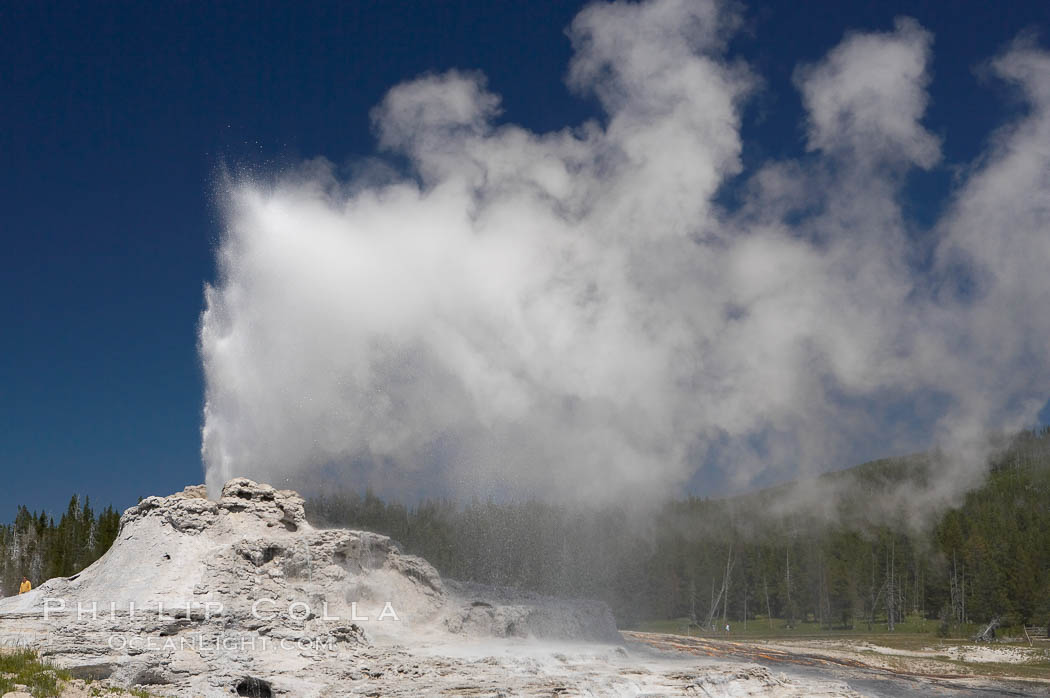 Castle Geyser erupts, reaching 60 to 90 feet in height and lasting 20 minutes.  While Castle Geyser has a 12 foot sinter cone that took 5,000 to 15,000 years to form, it is in fact situated atop geyserite terraces that themselves may have taken 200,000 years to form, making it likely the oldest active geyser in the park. Upper Geyser Basin. Yellowstone National Park, Wyoming, USA, natural history stock photograph, photo id 13433
