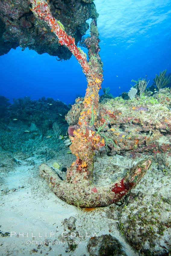 Cayman Islands Caribbean reef scene, Grand Cayman Island. Grand Cayman, Cayman Islands, natural history stock photograph, photo id 32203