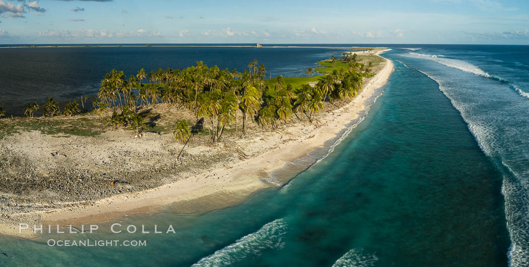 Coconut palm trees on Clipperton Island, aerial photo. Clipperton Island is a spectacular coral atoll in the eastern Pacific. By permit HC / 1485 / CAB (France). Clipperton Island, France, natural history stock photograph, photo id 32844