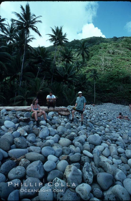 Cocos Island. Cocos Island, Costa Rica, natural history stock photograph, photo id 02046