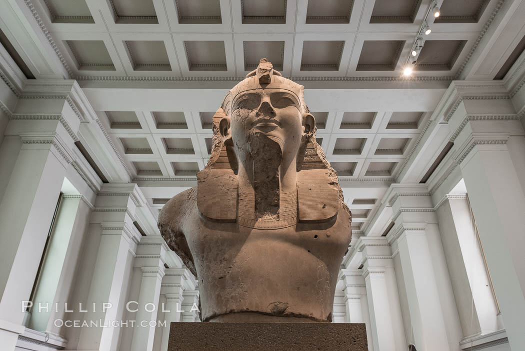 Colossal limestone bust of Amenhotep III, from the mortuary temple of Amenhotep III, Thebes, Egypt. 18th Dynasty, about 1350 BC. British Museum, London, United Kingdom, natural history stock photograph, photo id 28325