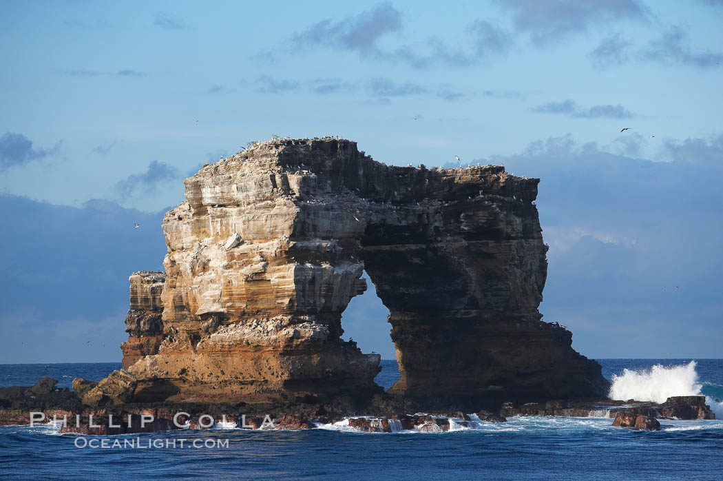 Darwins Arch, a dramatic 50-foot tall natural lava arch, rises above the ocean a short distance offshore of Darwin Island. Galapagos Islands, Ecuador, natural history stock photograph, photo id 16626