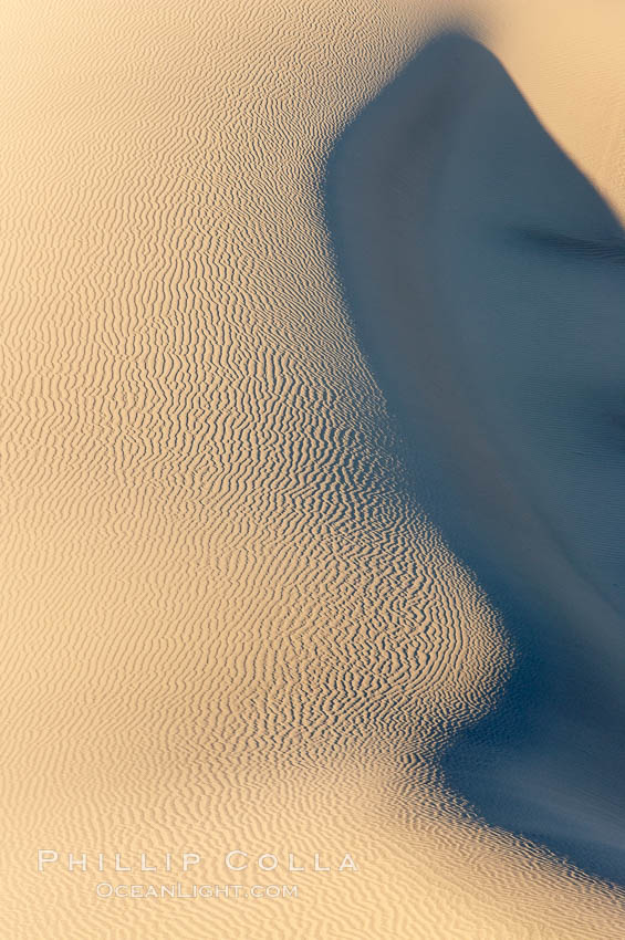 Sand Dunes, California.  Near Stovepipe Wells lies a region of sand dunes, some of them hundreds of feet tall. Death Valley National Park, USA, natural history stock photograph, photo id 15632