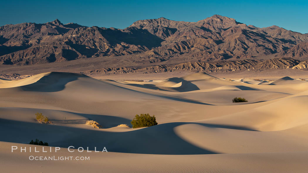 Sand Dunes and the Grapevine Mountains, California.  Near Stovepipe Wells lies a region of sand dunes, some of them hundreds of feet tall. Death Valley National Park, USA, natural history stock photograph, photo id 15640