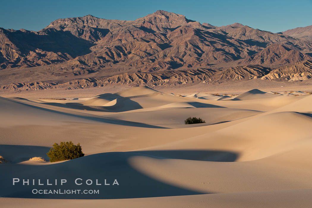 Sand Dunes and the Grapevine Mountains, California.  Near Stovepipe Wells lies a region of sand dunes, some of them hundreds of feet tall. Death Valley National Park, USA, natural history stock photograph, photo id 15641