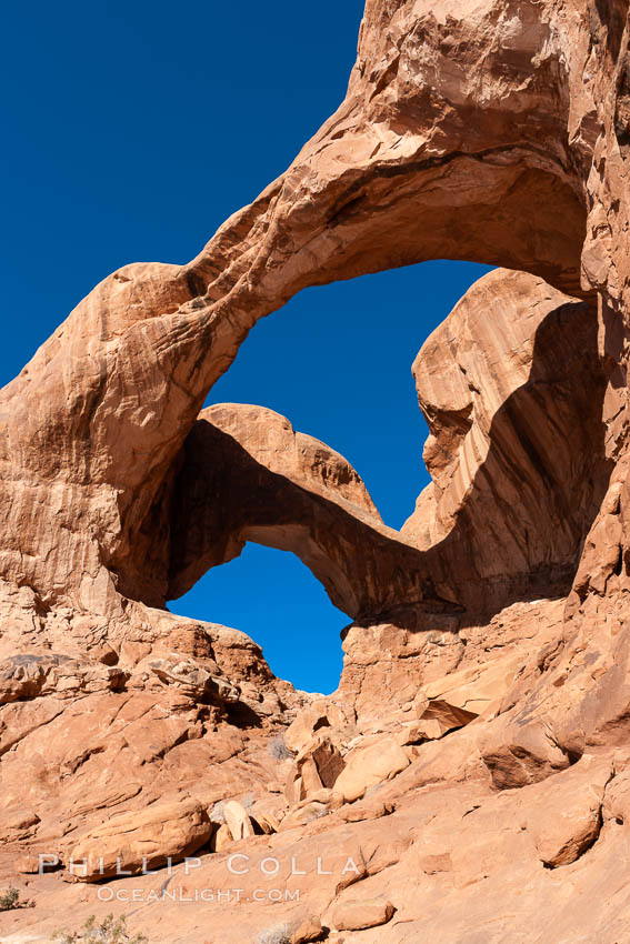 Double Arch, an amazing pair of natural arches formed in the red Entrada sandstone of Arches National Park. Utah, USA, natural history stock photograph, photo id 18178