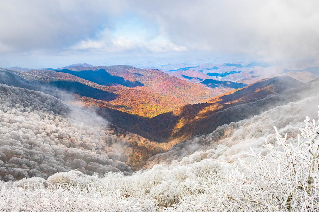 Early Snow and Late Blue Ridge Parkway Fall Colors, Asheville, North Carolina. USA, natural history stock photograph, photo id 34642