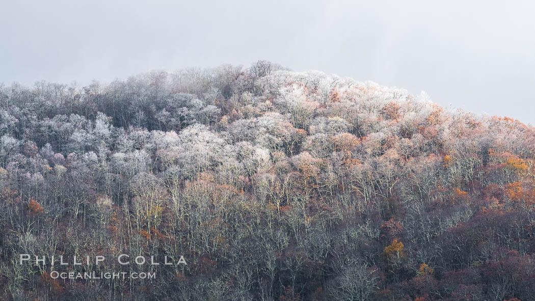 Image 34637, Early Snow and Late Blue Ridge Parkway Fall Colors, Asheville, North Carolina. Asheville, North Carolina, USA