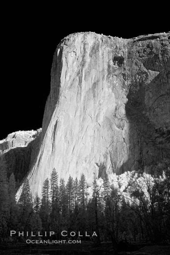 El Capitan eastern face, sunrise. Yosemite National Park, California, USA, natural history stock photograph, photo id 22770