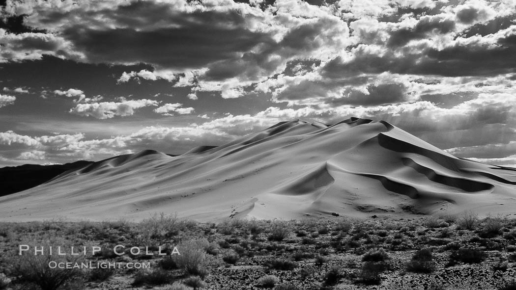 "Eureka Dunes.  The Eureka Dunes are California's tallest sand dunes, and one of the tallest in the United States.  Rising 680' above the floor of the Eureka Valley, the Eureka sand dunes are home to several endangered species, as well as ""singing sand"" that makes strange sounds when it shifts. Death Valley National Park, USA, natural history stock photograph, photo id 25251"