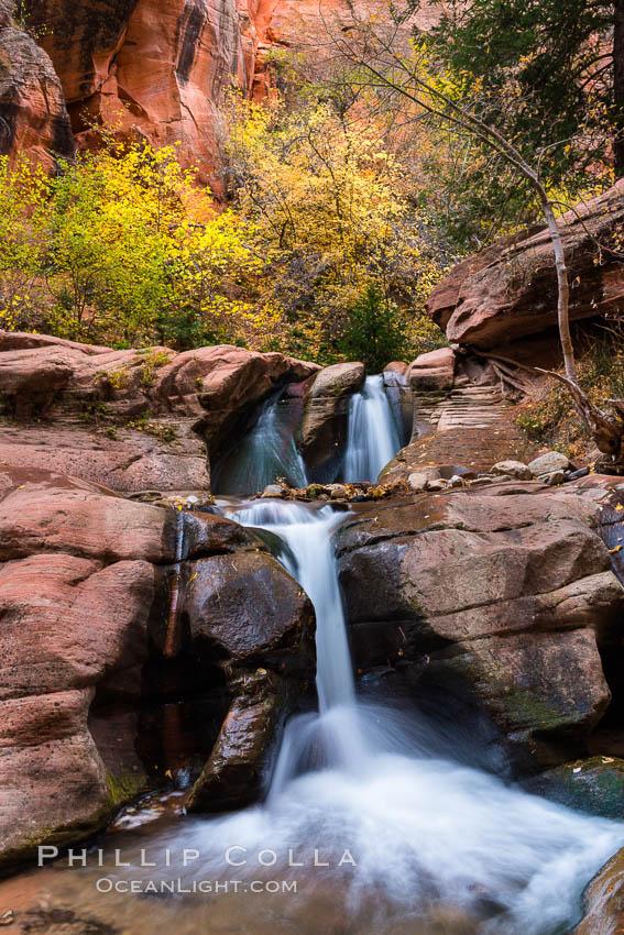Fall Colors in Kanarra Creek Canyon, Utah, Kanarraville