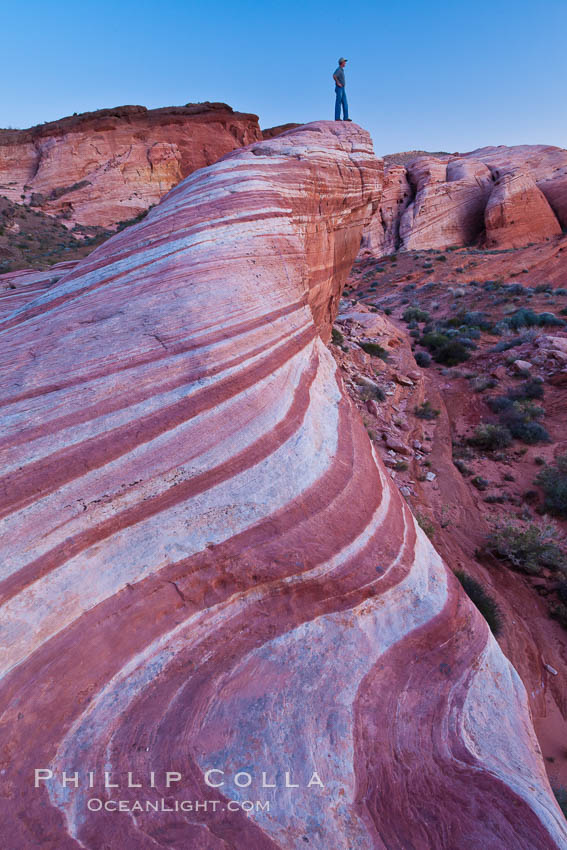 The Fire Wave, a uniquely striped sandstone formation in Valley of Fire State Park. Valley of Fire State Park, Nevada, USA, natural history stock photograph, photo id 26632