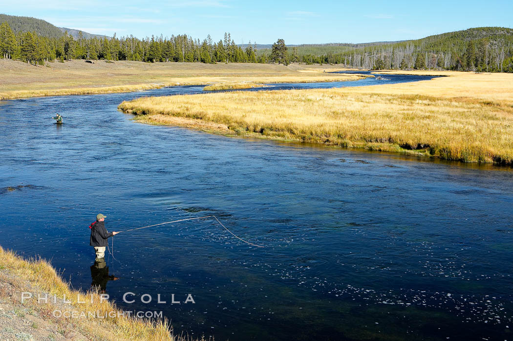 Fly fisherman wading in the Madison River, fall, autumn. Yellowstone National Park, Wyoming, USA, natural history stock photograph, photo id 19590