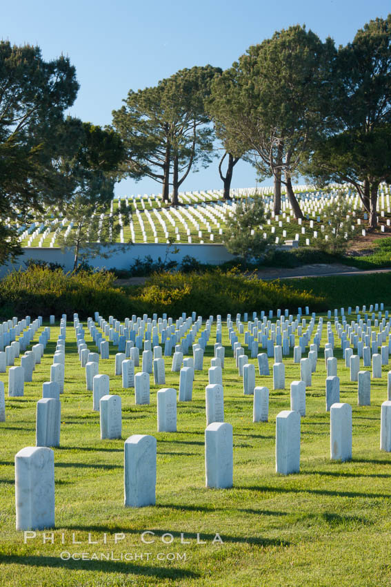Fort Rosecrans National Cemetery. San Diego, California, USA, natural history stock photograph, photo id 26596