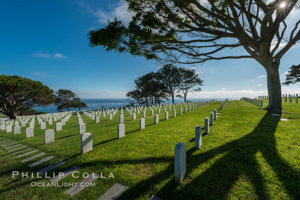 Fort Rosecrans National Cemetery. San Diego, California, USA, natural history stock photograph, photo id 27883