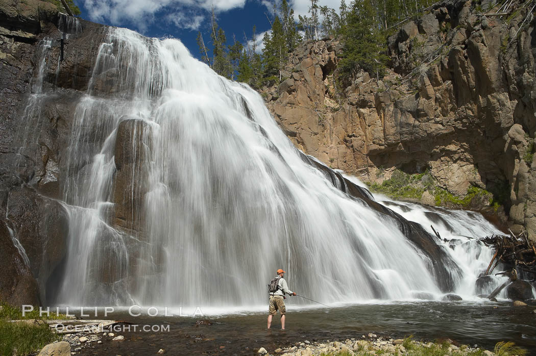 Fly fishing below Gibbon Falls. This flyfisherman hiked up the Gibbon River to reach the foot of Gibbon Falls. Gibbon River, Yellowstone National Park, Wyoming, USA, natural history stock photograph, photo id 13275