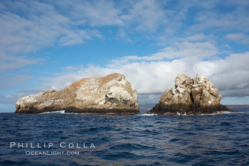 Gordon Rocks, a spectacular dive site near South Plaza Island. Gordon Rocks, Galapagos Islands, Ecuador, natural history stock photograph, photo id 16646