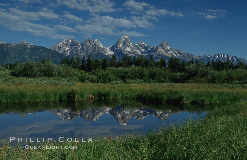 The Teton Range is reflected in a calm sidewater of the Snake River near Blacktail Ponds, summer. Grand Teton National Park, Wyoming, USA, natural history stock photograph, photo id 07392