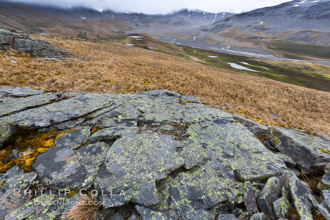 Grassy windy highlands and rocks, overlooking alluvial floodplain formed by glacier runoff near Stromness Bay. Stromness Harbour, South Georgia Island, natural history stock photograph, photo id 24610