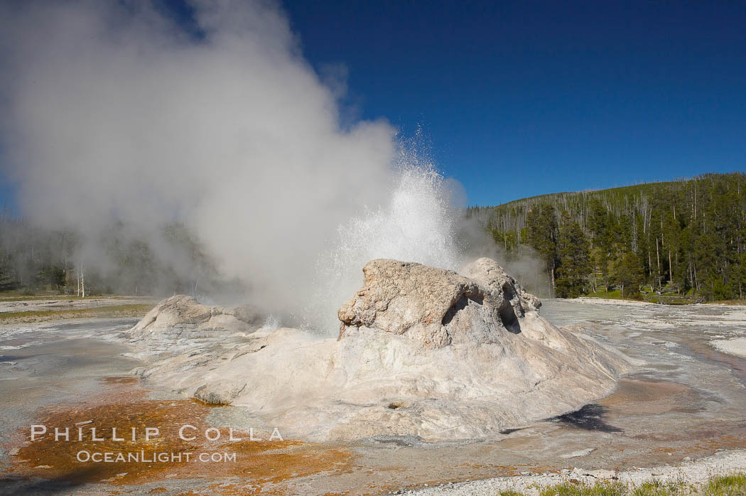 Grotto Geyser erupts.  Upper Geyser Basin. Upper Geyser Basin, Yellowstone National Park, Wyoming, USA, natural history stock photograph, photo id 13397