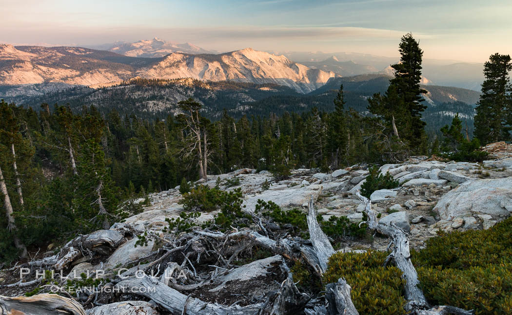 Half Dome and Cloud's Rest from Summit of Mount Hoffmann, sunset. Mount Hoffmann, Yosemite National Park, California, USA, natural history stock photograph, photo id 31202